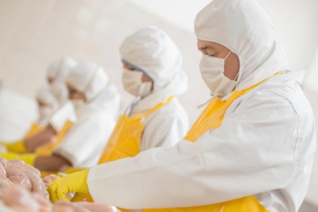 食品工場で働く従業員